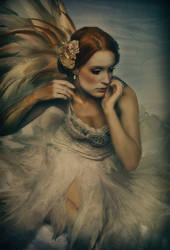 The dying swan by MOTOM-MOandTOM