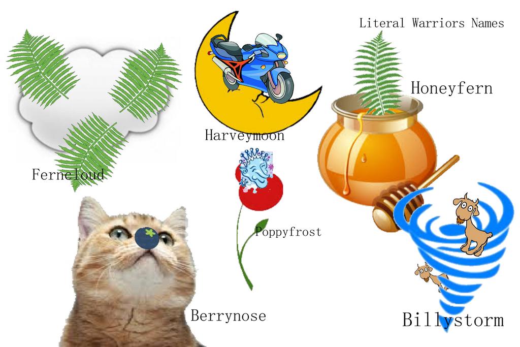 Warrior Cat Names Taken Literally Image Mag