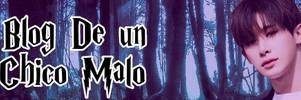 Blog De Un Chico Malo, WachiWa_Wonho Banner