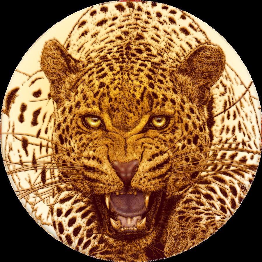 Leopard, LEOPARD by BEYONDtheDISC