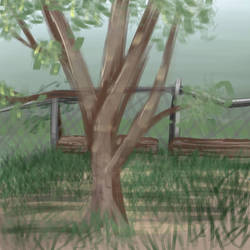 lierally sketched my front yard