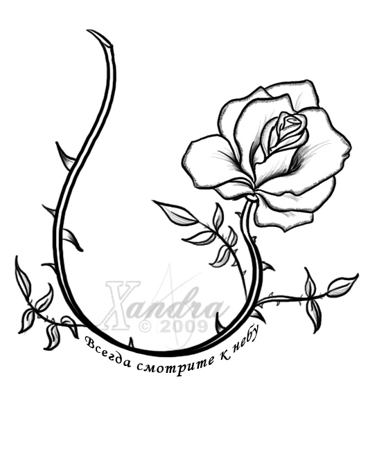 The Rose Vine -tattoo flash- by Xandra-samaRose Vine Drawing Tattoo
