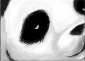 Pandabulous by Beca1591