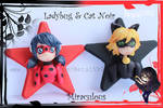 Ladybug and Cat Noir by Beca1591