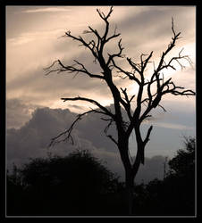 Cloudy silouette by Dukren