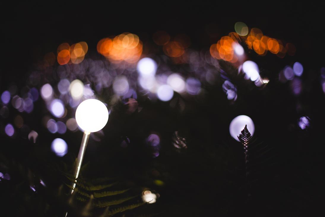Munro Lights 2 by matthewfoxxphotos