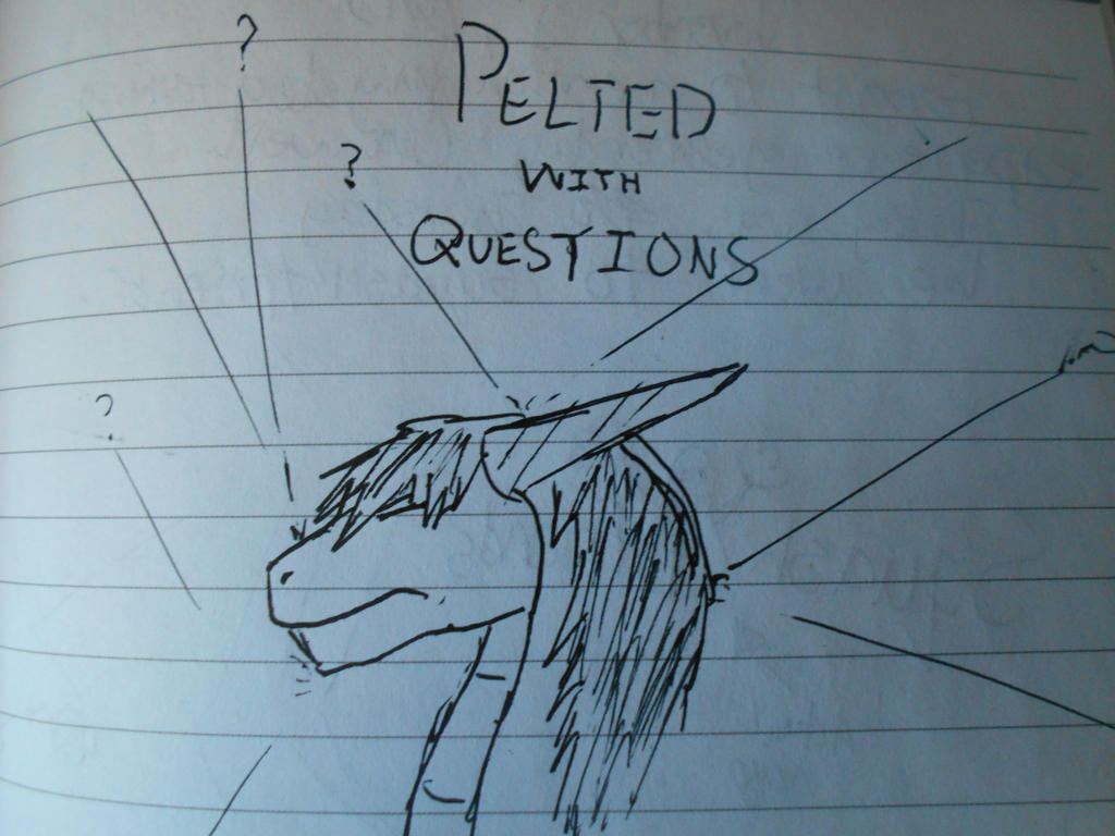 Pelted With Questions by X-Kayron-X