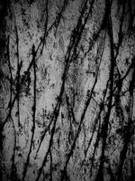 Vine Texture 01 by dknucklesstock