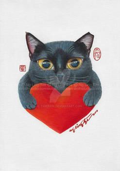 We Love Black Cats