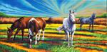 Texas Quarter Horses by GregSkrtic