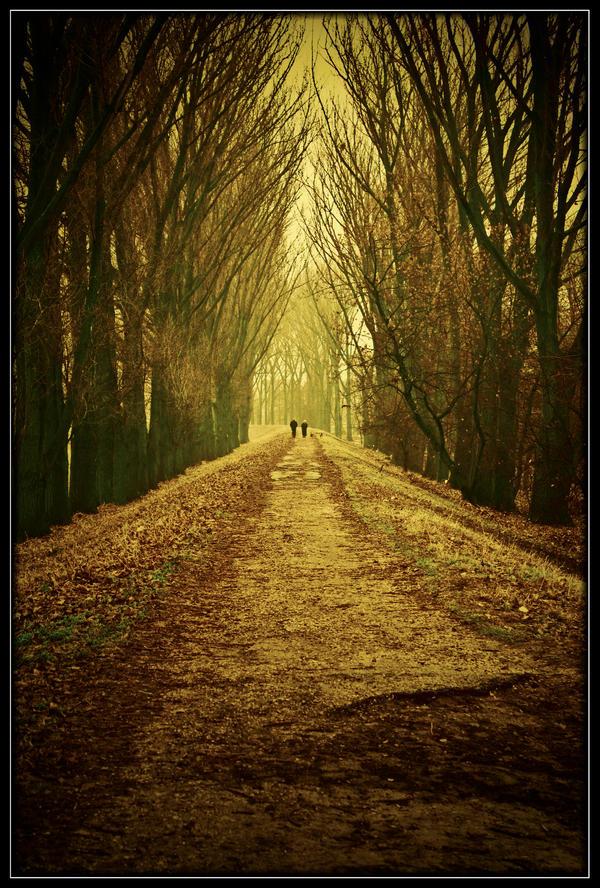 Walk by Riffo