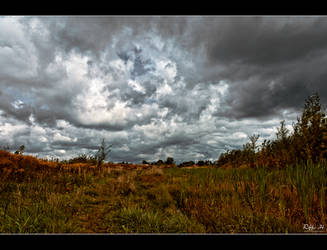 Late Summer by Riffo
