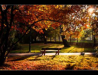 Autumn 2011 by Riffo