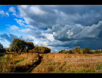 Autumn 2011 pt.3 by Riffo