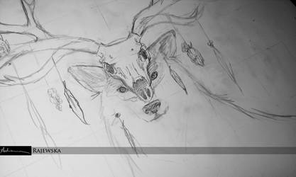 Wolf WorkInProgress