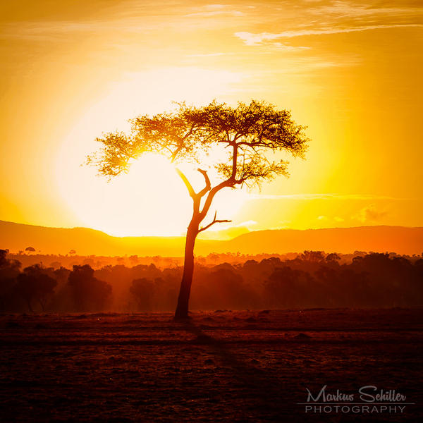 Good Morning Kenya by spike83
