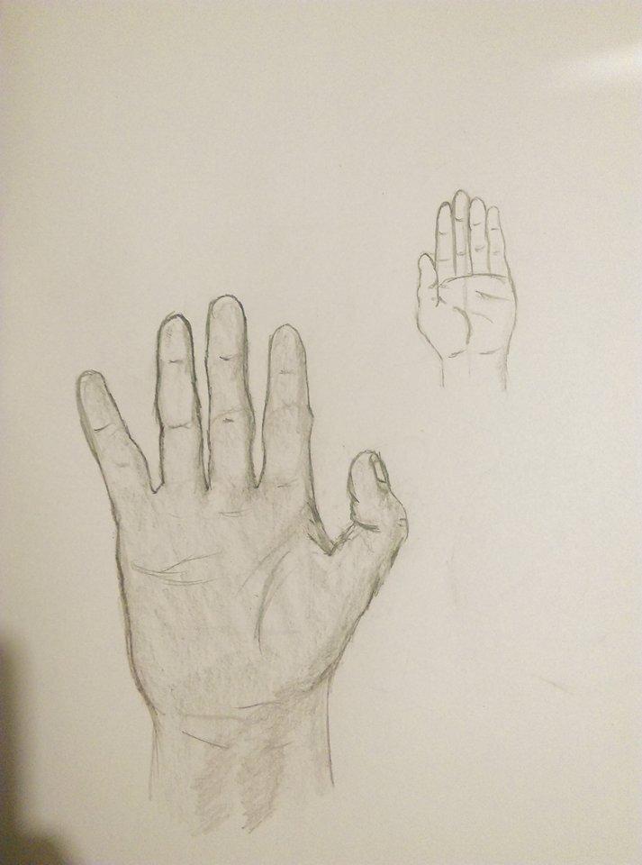 Hand Studies by Trip-mod