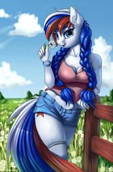 Marussia by Pony-Way