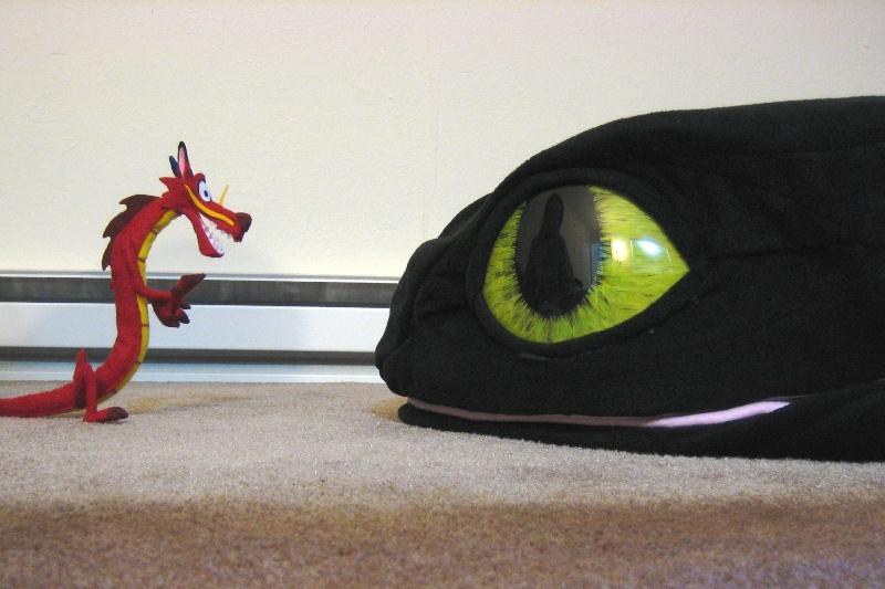 + Dragon Not Lizard + by hiyoko-chan