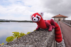 The Legend of Korra - Pabu Plush by hiyoko-chan