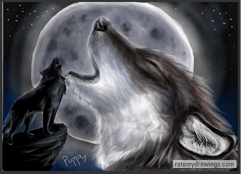 wolf howling drawing g...