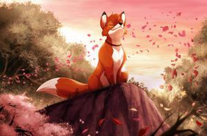 Com: Colors of the...Fox?