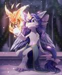 Com: A Warm Friend for Winter's Night
