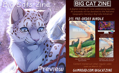 Big Cat Zine is Open For Preorders! by Seyumei