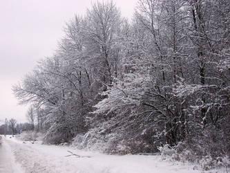 Winter Wonderland -- Roadside by rpg-chick