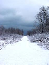 Winter Wonderland -- Path by rpg-chick