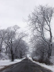 Winter Wonderland -- Playtime by rpg-chick