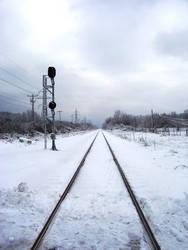 Winter Wonderland -- Tracks by rpg-chick