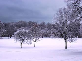 Winter Wonderland -- White by rpg-chick