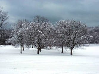 Winter Wonderland -- Landscape by rpg-chick