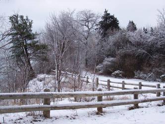 Winter Wonderland -- Sleigh by rpg-chick