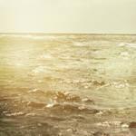 Sea Sunshine