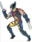 wolverine in custom outfit