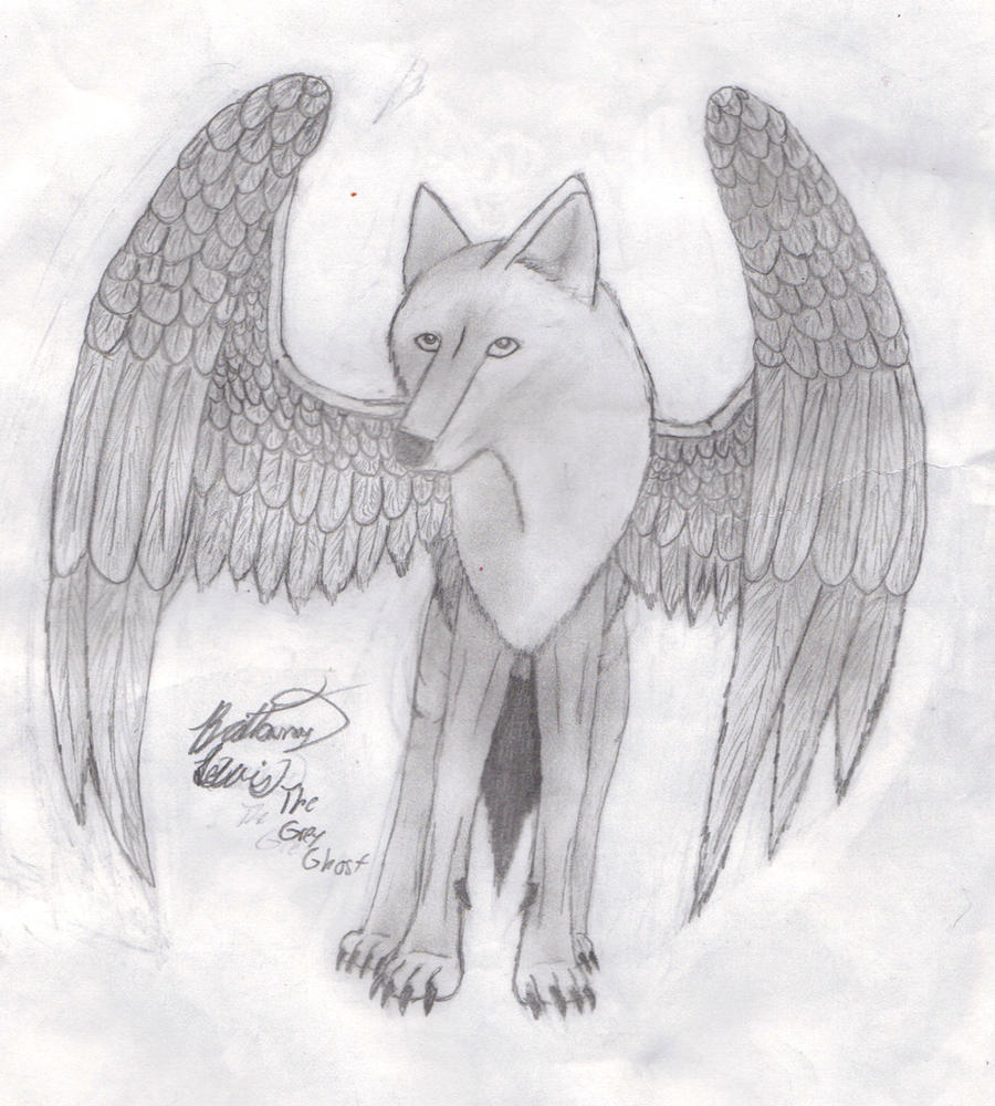 How To Draw A Wolf With Wings