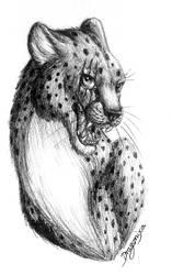 Black Cheetah Commission by Dragonixa2
