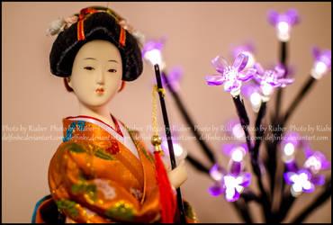 Japanese lady by delfinke