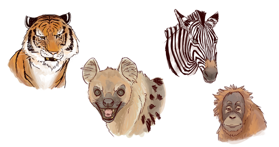 So i had to draw the animals from life of pi by isolated for Orange juice life of pi