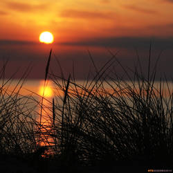 Sundown4 by Globaludodesign
