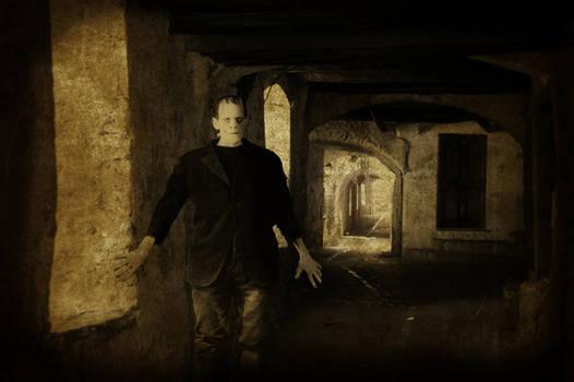 Monster of Frankenstein in Nyons