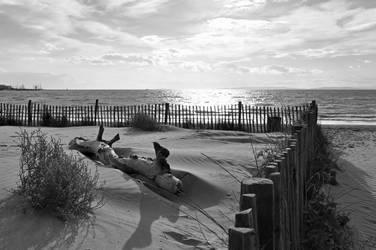 Autumn Beach by aelitys