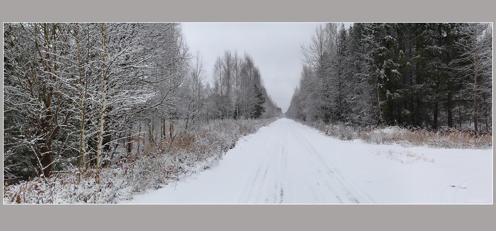 winter road by VAMPIdor