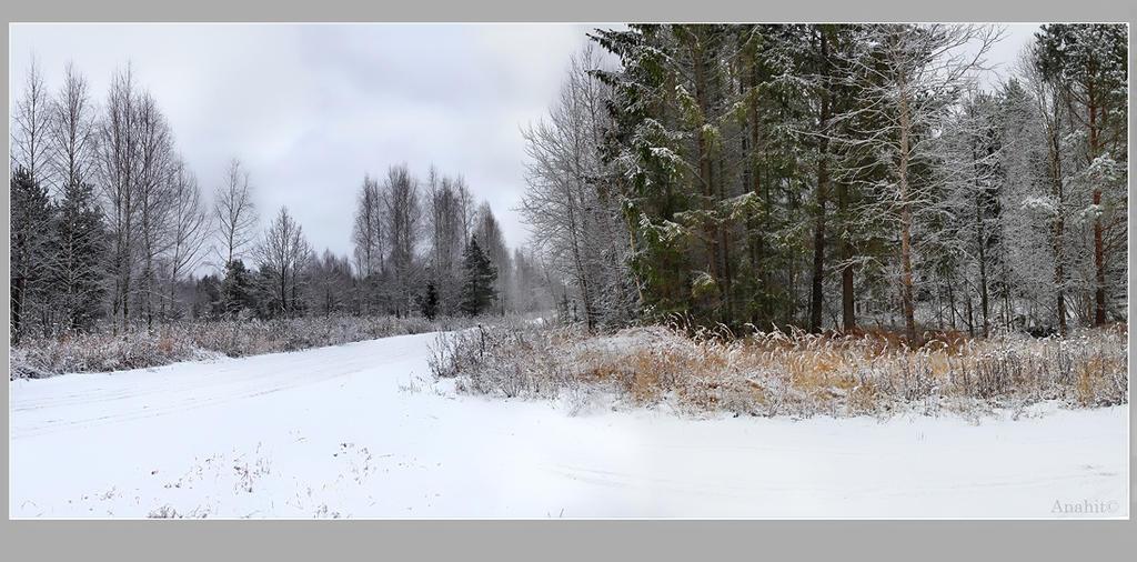winter road 2 by VAMPIdor