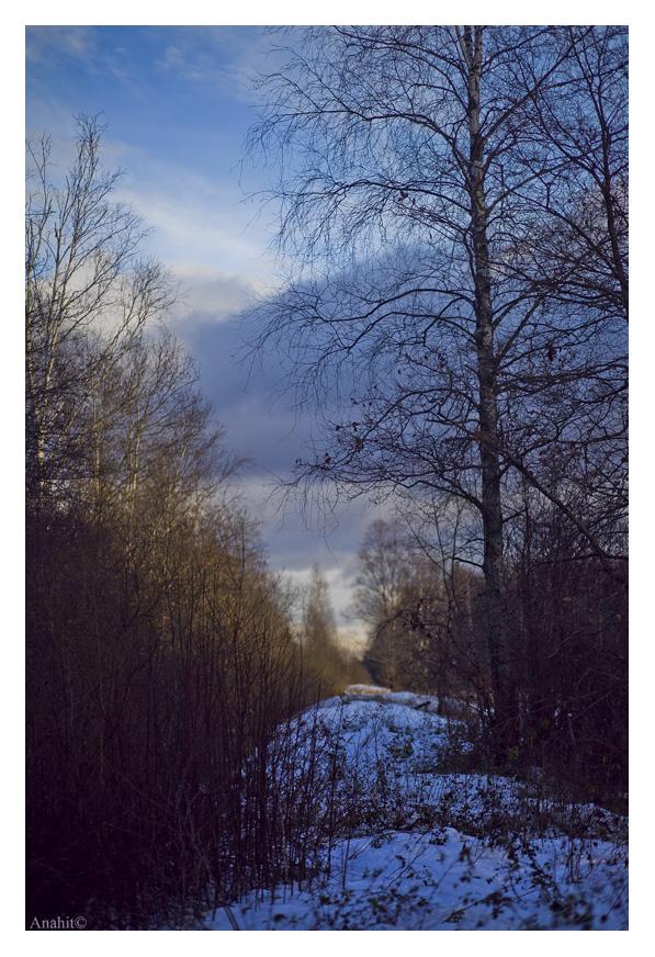 first snow by VAMPIdor