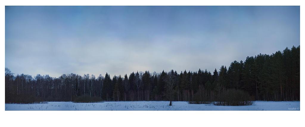 Winter peace by VAMPIdor
