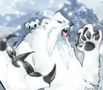 Polar pokemon