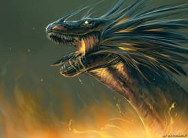 Dragon by Kipine